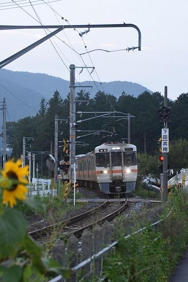 2020年8月4日撮影 羽場駅にて313系1700番台とヒマワリ
