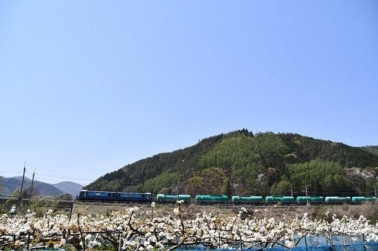 2020年5月2日撮影 東線貨物2080レ EH200-9号機とリンゴの花