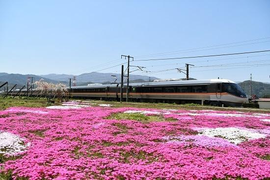 2日撮影 中央西線 芝桜と10M 383系「WVしなの10号」