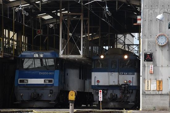 2020年6月6日撮影 塩尻機関区篠ノ井派出所 EH200-901号機とEF64-1011号機のライトが点いての並び