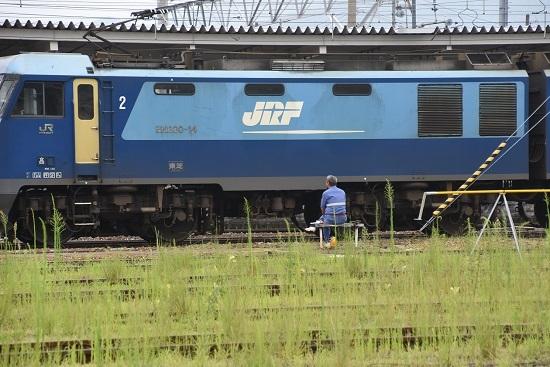 2020年8月8日撮影 北長野から戻って来た 単1384レ EH200-14号機 誘導員さんの前を通過