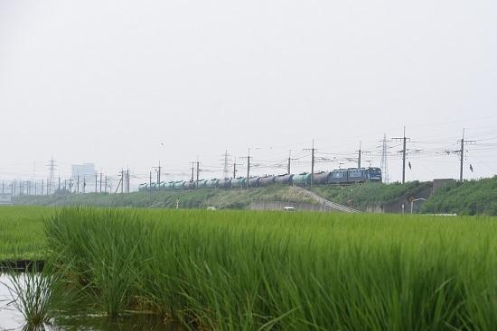 2020年8月8日撮影 東線貨物5460レ EH200-16号機が牽く緑タキ