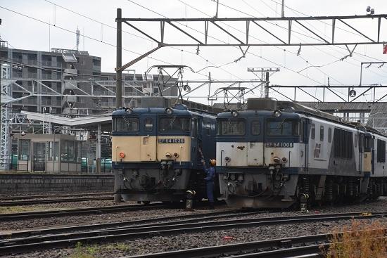 DSC_6028-1.jpg