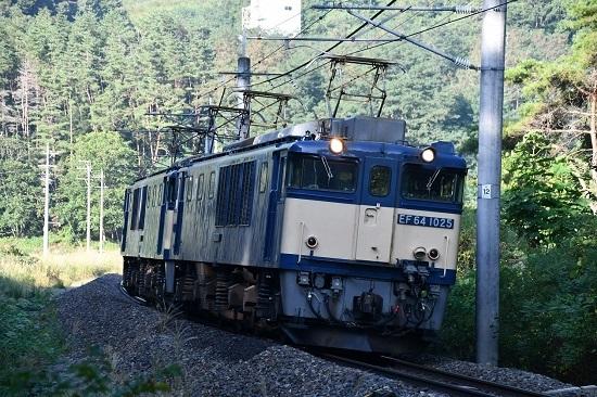 DSC_6059-1.jpg