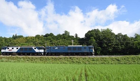 2020年6月20日撮影 篠ノ井線8467レ 坂北カーブにてサイド狙い