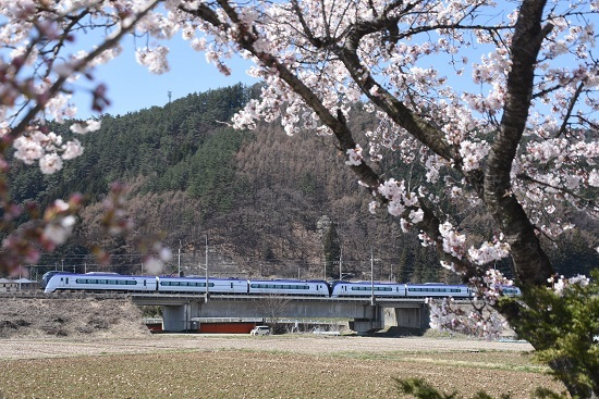 2020年4月11日撮影 塩中の桜と5M E353系「あずさ5号」