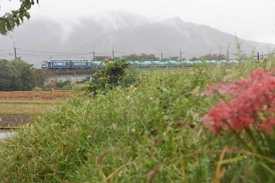 2020年10月8日撮影 東線貨物2080レ EH200-17号機と彼岸花
