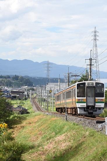 2020年8月10日撮影 飯田線は40‰にて213系 回送を後撃ち
