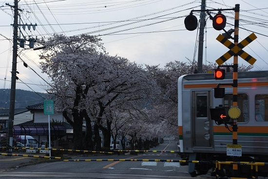 2020年4月12日撮影 2201M 213系と宮木の桜並木