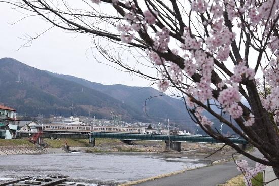 2020年4月12日撮影 204M 213系と桜