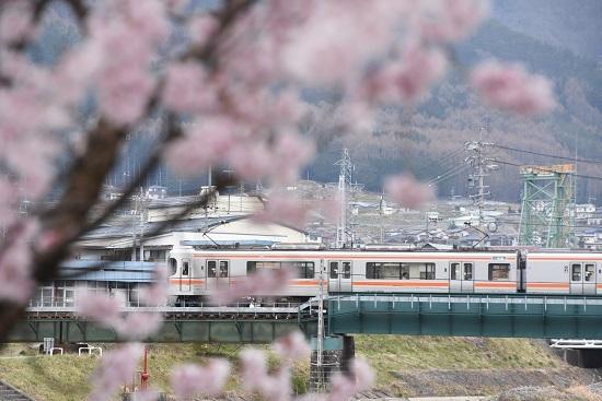 2020年4月12日撮影 207M 313系と桜のUP