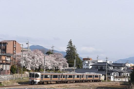 2020年4月12日撮影 飯田線 1506M 313系と桜