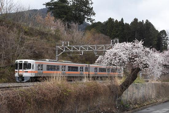 2020年4月15日撮影 洗馬駅にて1824M 313系と桜