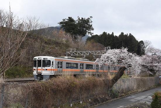 2020年4月15日撮影 洗馬駅にて1825M 313系と桜