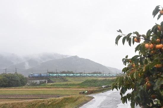 2020年10月17日撮影 東線貨物2080レ EH200-21号機と柿の木
