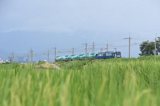 2020年8月13日撮影 東線貨物2080レ EH200-8号機