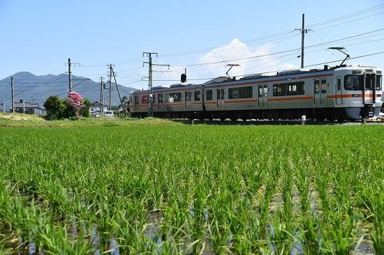 2020年6月7日撮影 飯田線 1415M 313系