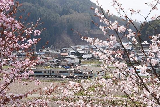 2020年4月26日撮影 161M E127系と桜を絡めて