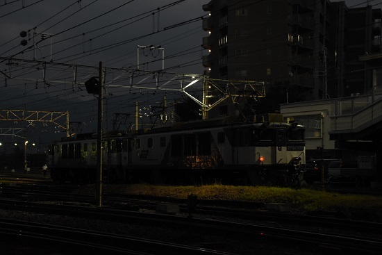 DSC_9533-1.jpg