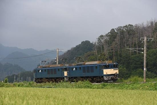 2020年8月22日撮影 篠ノ井線8467レ 坂北カーブを行くEF64原色重連-2