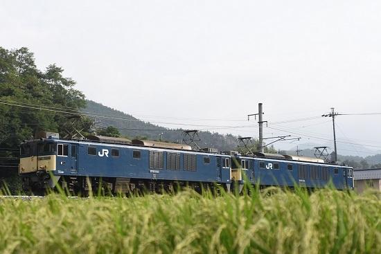 2020年8月22日撮影 篠ノ井線8467レ 坂北カーブを行くEF64原色重連を後撃ち