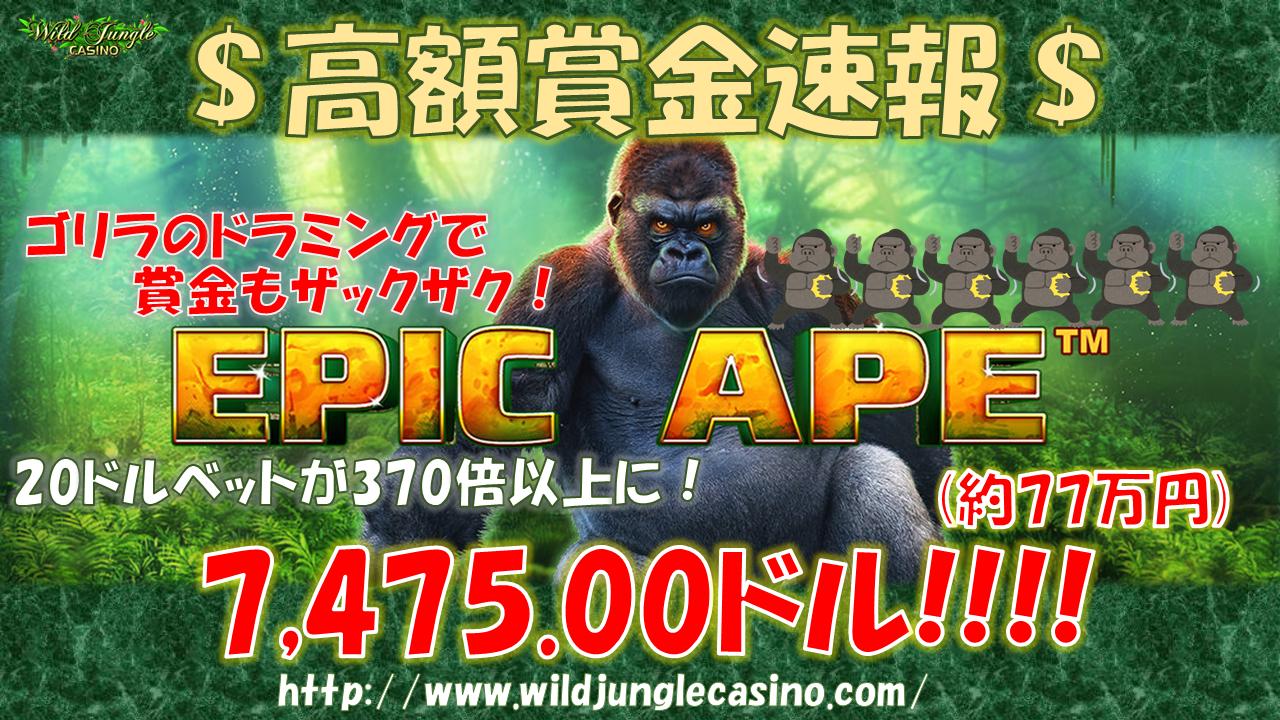 jp_20201124004540767.png