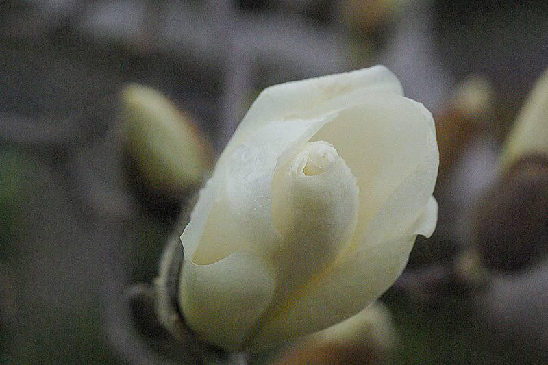 200328_110607.jpg