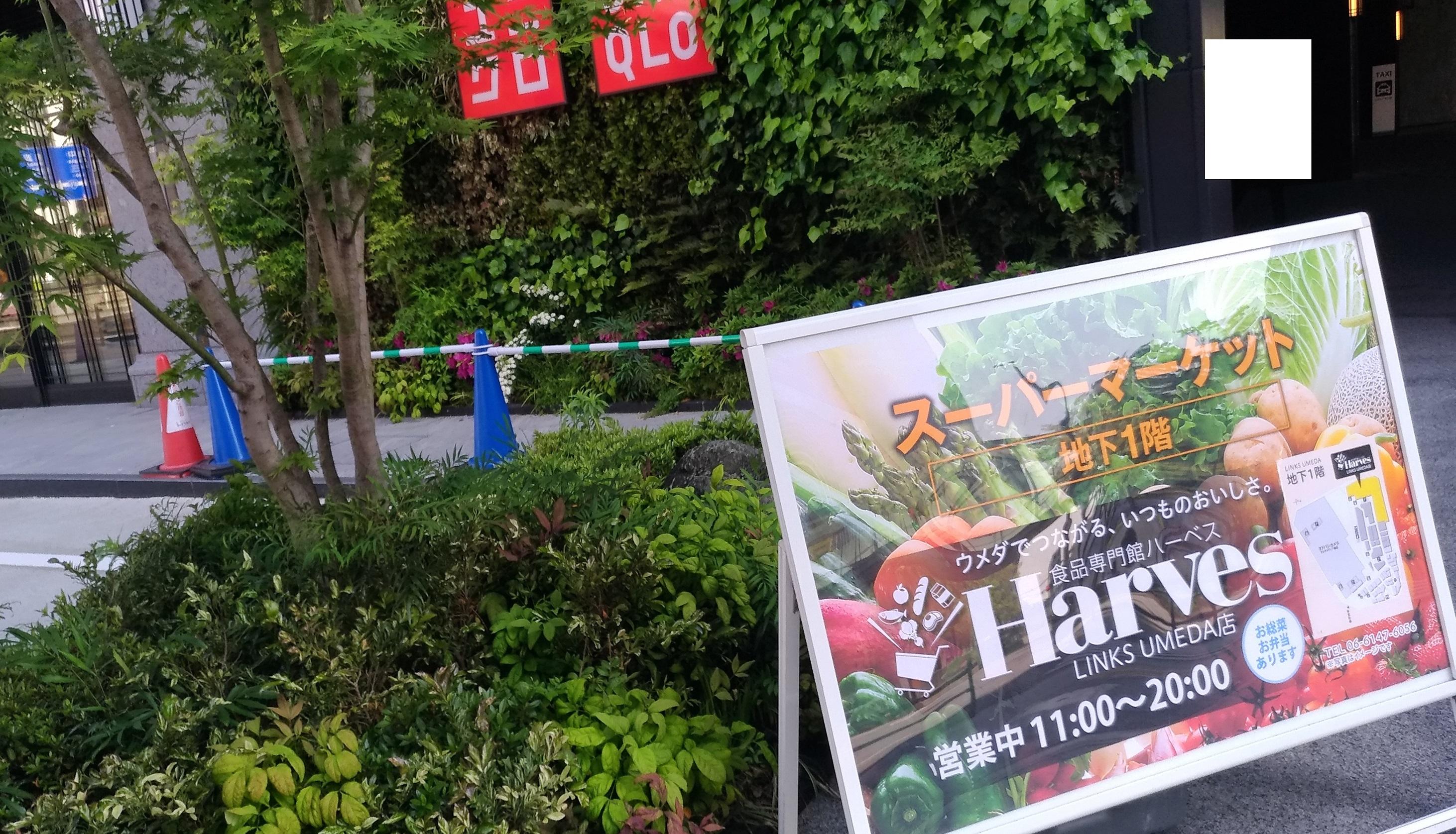 links_umeda_gw_0504_2.jpg