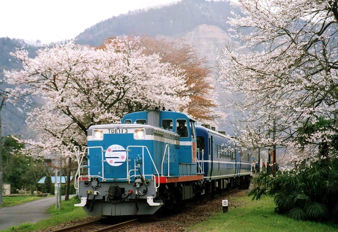 TR1999.jpg