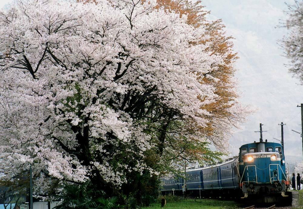 TR2000-2.jpg