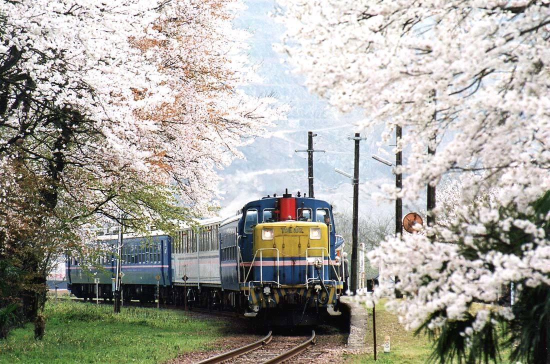 TR2001-2.jpg