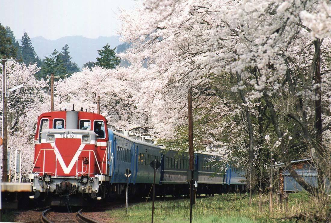 TR2001.jpg