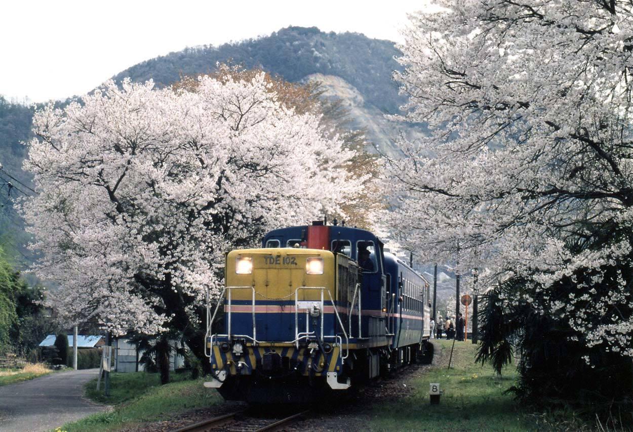 TR2003.jpg