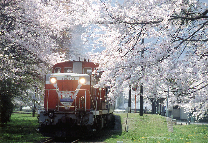 TR2005-1.jpg
