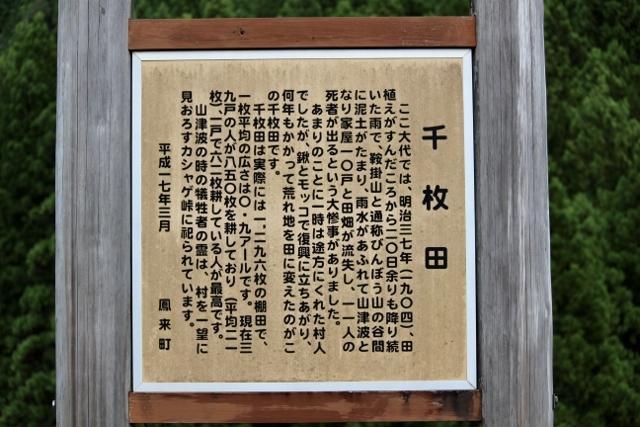 2020年9月茶禅一 (216) (640x427)