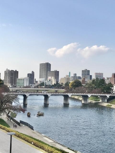 2020年11月岡崎東公園紅葉 (252) (480x640)