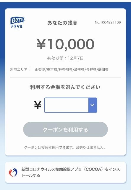 2020月12月ルイちゃんお誕生日旅行 (332) (443x640)