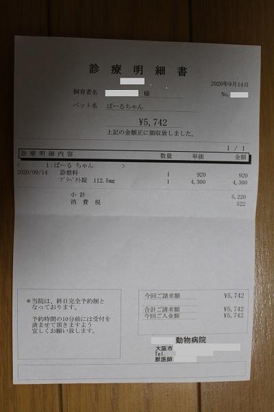 2020.09.22 定期健診(歯科)-6