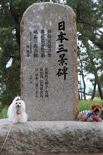 2020.10.17 城崎旅行1日目③天橋立-8