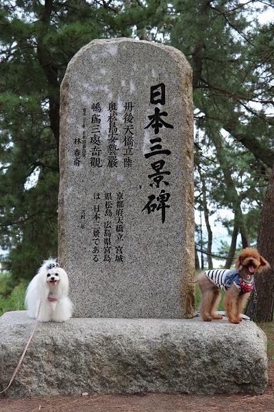 2020.10.17 城崎旅行1日目③天橋立-9