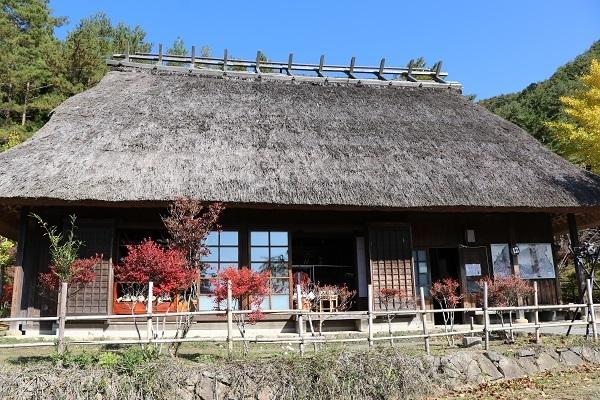 2020.11.30 富士五湖~清里+軽井沢旅行1日目⑤西湖いやしの里根場②-6