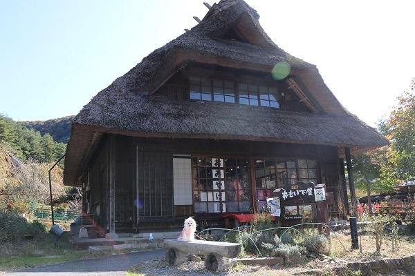 2020.11.30 富士五湖~清里+軽井沢旅行1日目⑤西湖いやしの里根場②-11