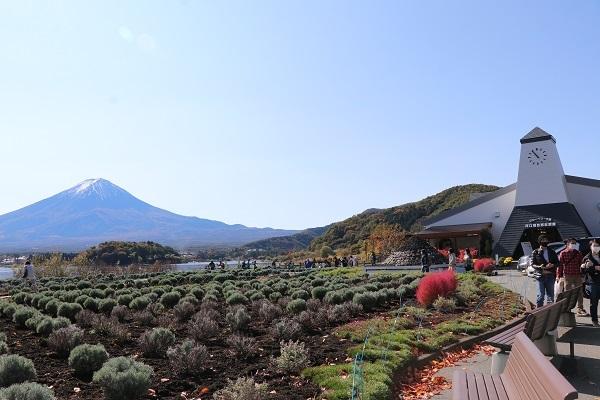 2020.12.02 富士五湖~清里+軽井沢旅行1日目⑦大石公園-1