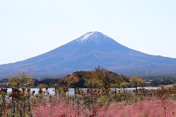 2020.12.02 富士五湖~清里+軽井沢旅行1日目⑦大石公園-18
