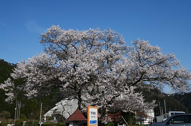 安芸太田4