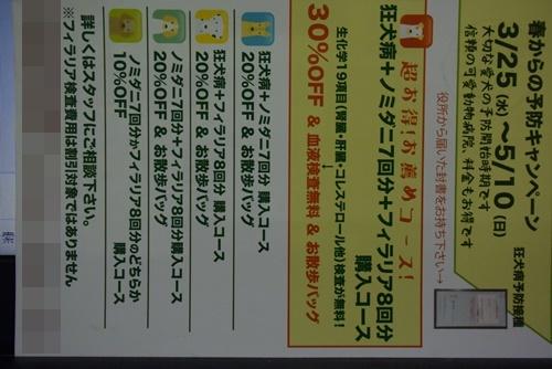 DSC_8864a.jpg