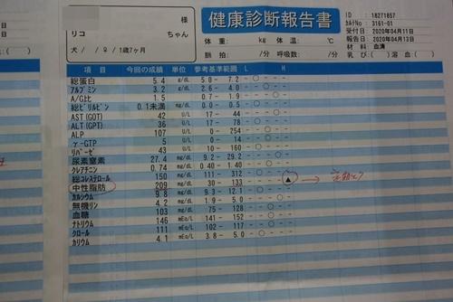 DSC_9169a.jpg