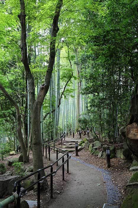 瑜伽山園地4