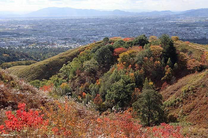 秋の若草山5