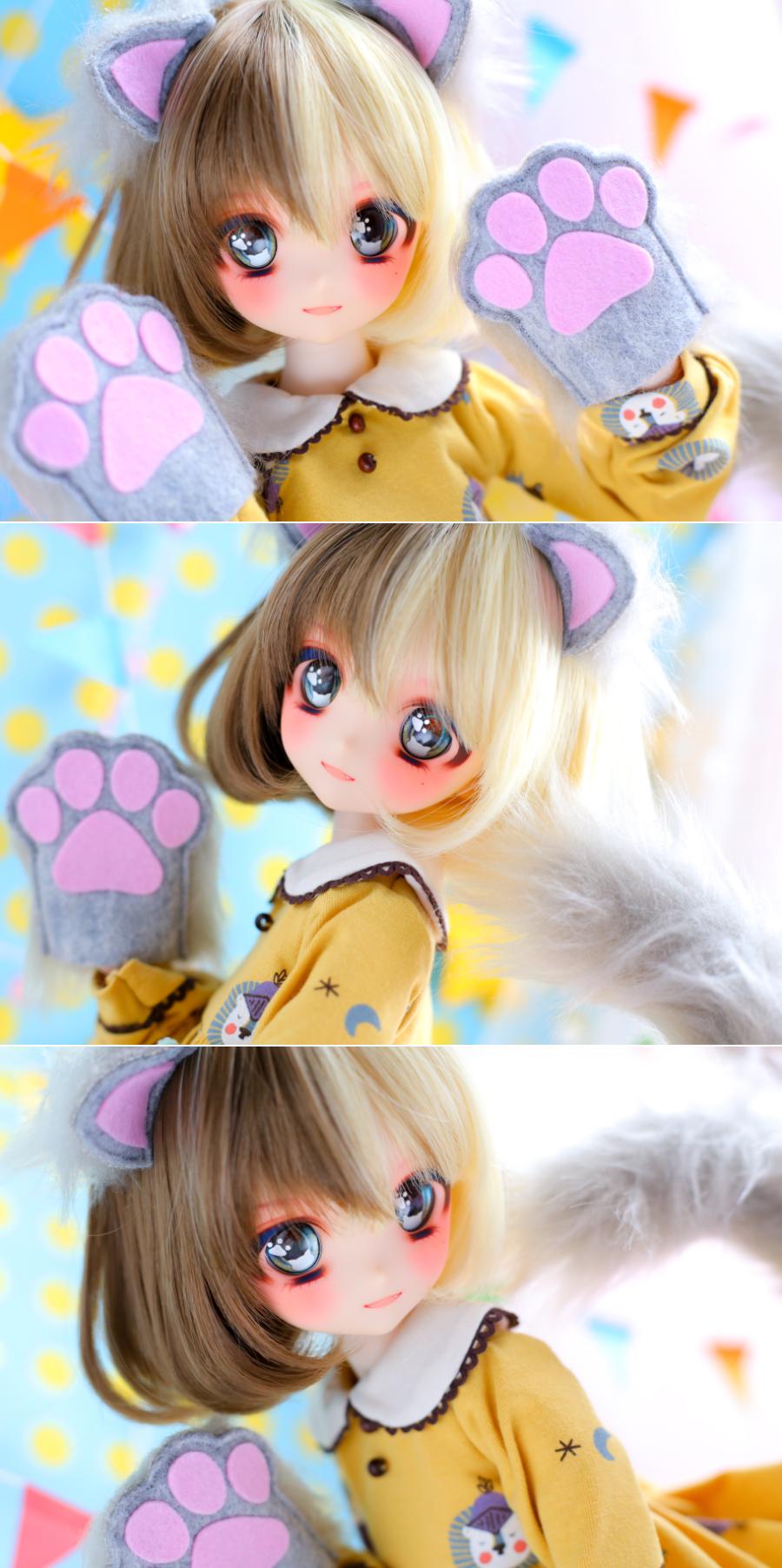 ヤフオク054DWC-01三毛猫ちゃんまとめ01